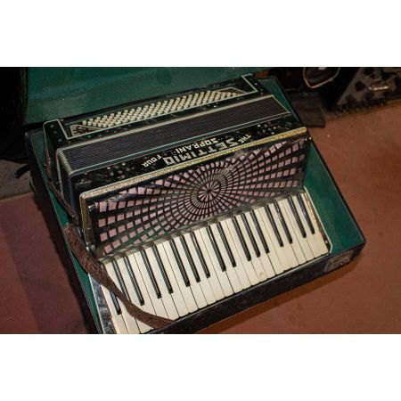 Accordion with case