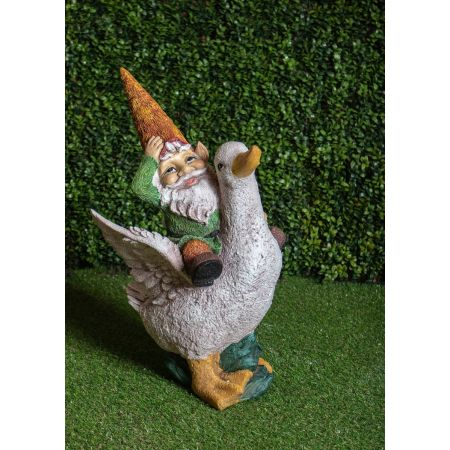 Gnome On Ducks Back