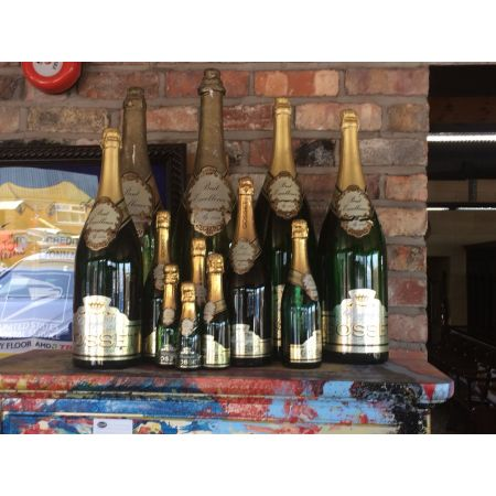Set of 12 champagne bottles various sizes